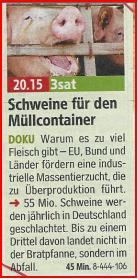 TV 14 Schwein