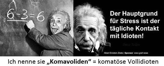 Komavoliden Einstein