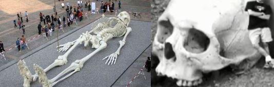 Nephilim Skelet +